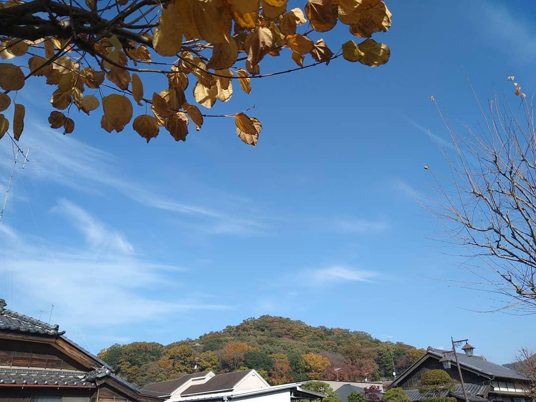 おはようございます。 本日も気持ちの良い秋晴れです。 木々も山も色づいてきて綺麗です。  本日も元気に営業致しますので、ご来店を心よりお待ちしております。