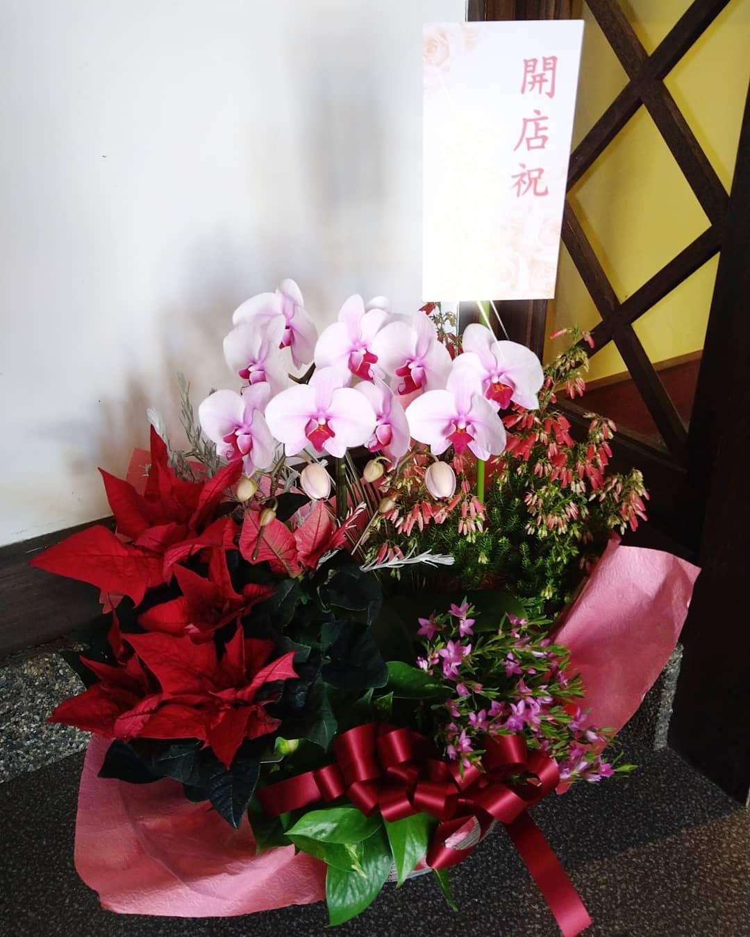 開店祝いに素敵なお花が届きました。 また店内が華やかになりました。 ありがとうございます。