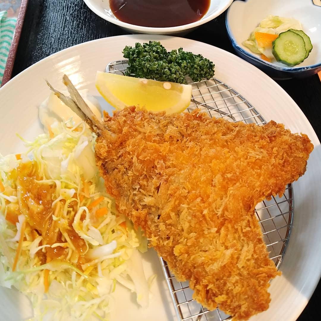 本日天丼ワンコイン!!  日替わりランチは鯵フライ定食です!! ご来店お待ちしております